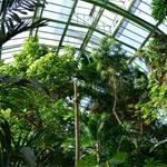Paris, Jardin des plantes 2016