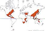 Carte de repartition des Hamamelidaceae