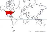 Carte de repartition des Limnanthaceae